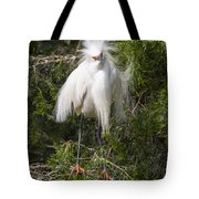 Angry Bird Snowy Egret In Breediing Plumage Tote Bag