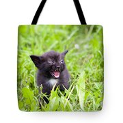 Angry Kitten Tote Bag