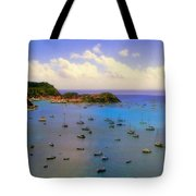 Anguilla's Softness Tote Bag