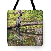 Anhinga And Reflection Tote Bag