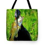 Anhinga And The Fish Tote Bag