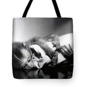 Animal Research Tote Bag