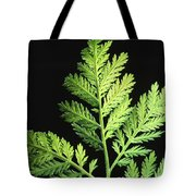 Annual Wormwood Tote Bag