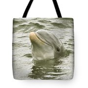 Another Smiling Pose Tote Bag