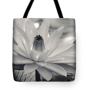 Ansel's Lily Tote Bag