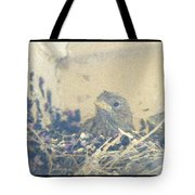 Anticipation Of Flight Tote Bag