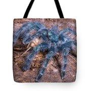 Antilles Pinktoe Tarantula Tote Bag