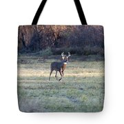Antlers In The Sun Tote Bag