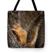 Apache Fox Squirrel Tote Bag