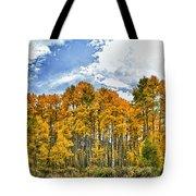 Apen Trees In Fall Tote Bag