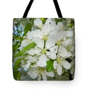 Apple Blossoms On The Trail Tote Bag