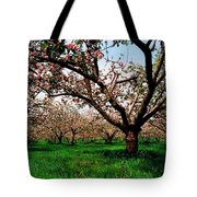 Apple Orchard, Co Armagh, Ireland Tote Bag
