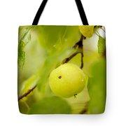 Apple Taste Of Summer Tote Bag