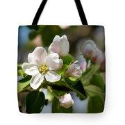Apple Tree Flowers Tote Bag
