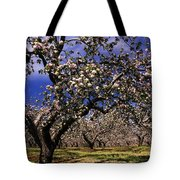 Apple Trees In An Orchard, County Tote Bag