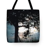 Approaching Storm Tote Bag by Barbara Plattenburg