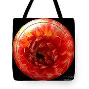 Apricot Orange Dahlia Under Glass Tote Bag