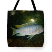 Aquarium Life Tote Bag