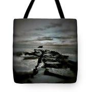 Aquatic Pathway Tote Bag