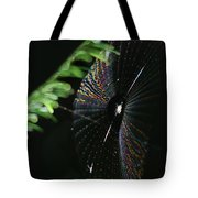 Arachnid Abstract Tote Bag