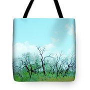 Aransas Nwr Texas Tote Bag