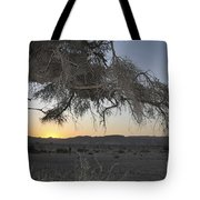 Aravah Desert Landscape  Tote Bag