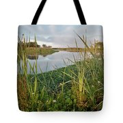 Arcata Marsh Tote Bag