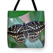 Archduke Butterfly Tote Bag
