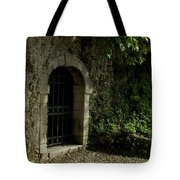 Arched Doorway With Iron Grate Tote Bag