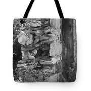 Architecture Of The Past Tote Bag