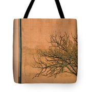 Architecture With Winter Tree Tote Bag by Lenore Senior