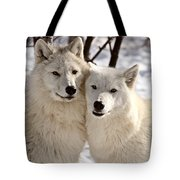 Arctic Wolves Close Together In Winter Tote Bag