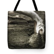 Are You Getting This Tote Bag
