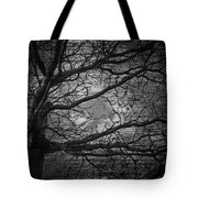 Arms Of The Night Tote Bag