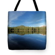 Arrow At Summit Lake Tote Bag