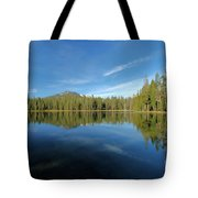 Arrow In The Sky Tote Bag