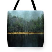 Arrow-straight Evergreens Are Reflected Tote Bag