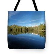 Arrowhead Reflection Tote Bag