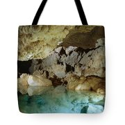 Art Palmer At Lake Of The Clouds Tote Bag