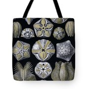 Artforms Of Nature Tote Bag