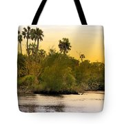 As Evening Ends Tote Bag