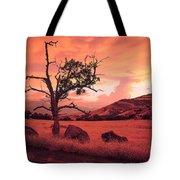 Ashland Sunset Tote Bag