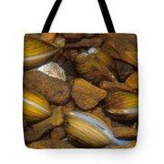 Asiatic Clam Tote Bag