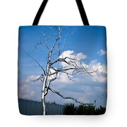 Askew - Roxy  Paine Tote Bag