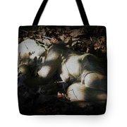 Asleep In The Leaves Tote Bag
