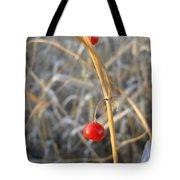 Asparagus Berries Tote Bag
