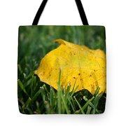 Aspen Leaf Tote Bag