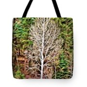 Aspen Tree On A Forest Road Tote Bag