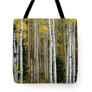 Aspen Trunks Tote Bag