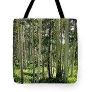 Aspen's Pride Tote Bag